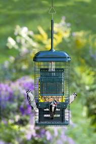 Brome Squirrel Buster Suet Feeder 1106