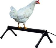 K&h Pet Products-Thermo-chicken Percher 26 In/40 Watt