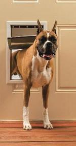 PetSafe Freedom Door Premium White Medium PPA00-10860
