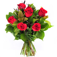 6 Red Roses Bunch