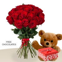 24 Red Rose Bunch With Teddy and FREE Chocolates