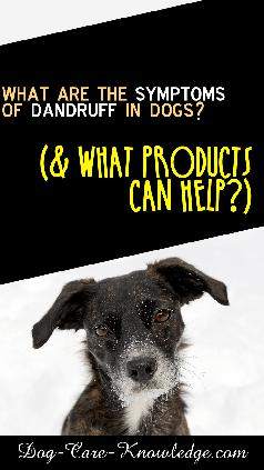 store-pin-dog-dandruff-c-238.png