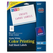 Avery Color Printing Label - 5
