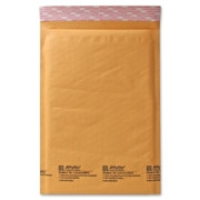 Sealed Air Jiffylite Cellular Cushioned Mailer - 13