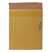 Sealed Air Jiffy Rigi Bag Mailer - 2