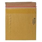 Sealed Air Jiffy Rigi Bag Mailer - 4