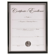 Burnes Group Backloading Document/Certificate Frame