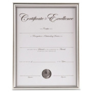 Burnes Group Backloading Document/Certificate Frame - 1