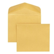 Quality Park Extra Heavy-Duty Document Envelope - 3