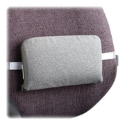 Master Lumbar Support Cushion