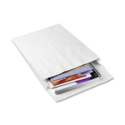 Quality Park Ship-Lite Plain Expansion Envelope - 1