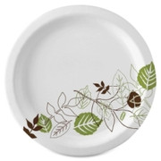 Dixie Pathways Design Everyday Paper Plates - 1