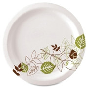 Dixie Pathways Design Everyday Paper Plates - 2