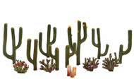 "Woodland Scenics Cactus Classic Ready Made Trees 1/2"" to 2-1/2"" 13-Pack"