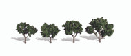 "Woodland Scenics Classic Trees Ready Made Cool Shade 2"" to 3"" Tall 4-Pack"
