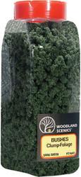 Woodland Scenics Model Railroad Landscape Bushes Foliage Shaker Dark Green