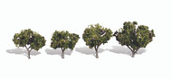"Woodland Scenics Classic Trees Ready Made Sun Kissed 2"" to 3"" Tall 4-Pack"