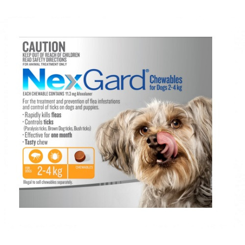 NexGard Flea and Tick Treatment For Dogs In A Tasty Chew 2-4 kg 6 pack
