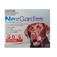 NexGard Flea and Tick Treatment in a tasty Chew for Large Dogs 25 - 50 kg 6 Pack