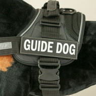 Large Side Patch Labels for EzyDog Convert Harness