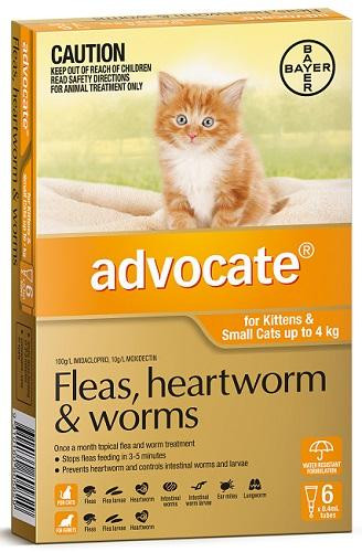 Advocate for Kittens and Cats up to 4kg 6 pack| Love A Pet