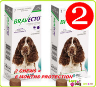 Bravecto Chews For Medium Dog 10-20kg  2 Chews
