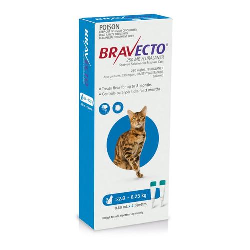 Bravecto Blue Flea and Tick Treatment For Cats