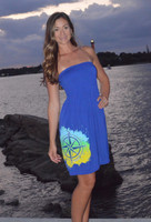 Royal Blue strapless  onesize compas dress