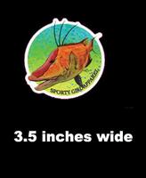 3.5 inch  hogfish  sticker