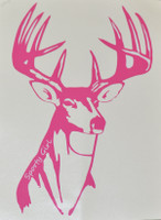 Pink Big Buck Hunting Decal