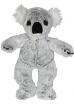 Korki the Koala