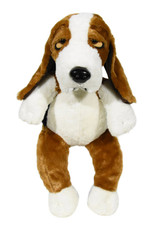 Dudley the Basset Hound