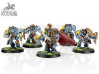 SILVER Wolf Guard Terminators
