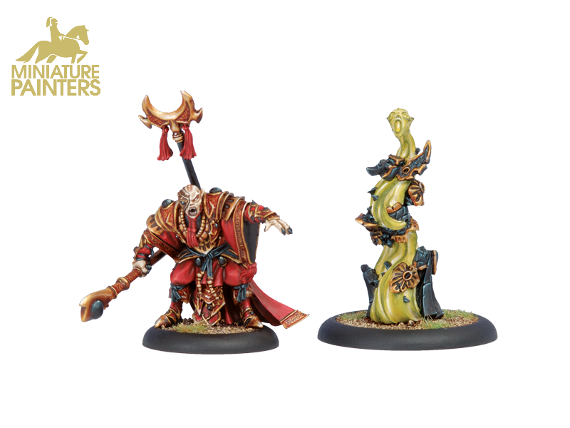 GOLD Supreme Aptimus Zaal & Kovaas