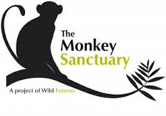 monkey-sanctuary.jpg
