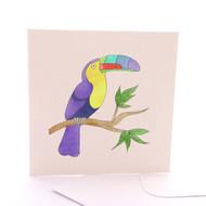 Animalia Toucan