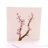 Botanica Cherry Blossom