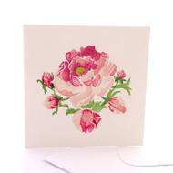 Botanica Peony Rose