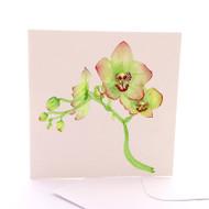 Botanica Orchid