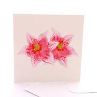 Botanica Oriental Lily