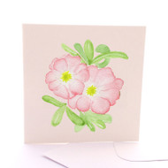 Botanica Wild Rose