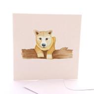 Baby Dingo