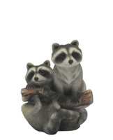 Raccoons on a Tree Branch