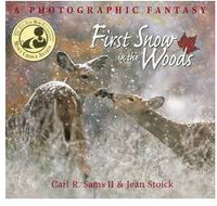 First Snow in the Woods Book