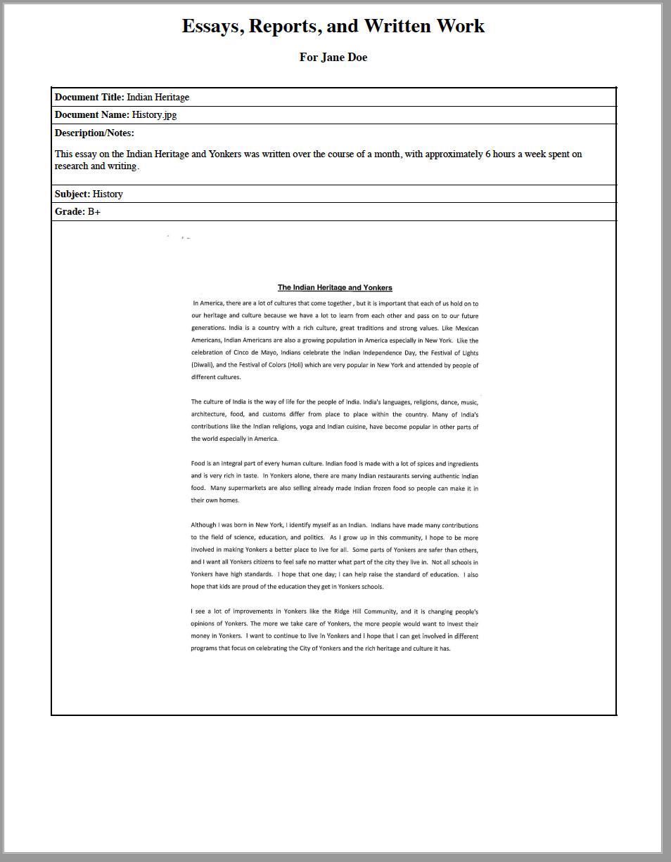 Essay in portfolio report