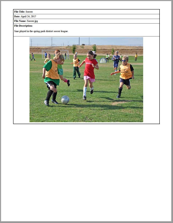 Extracurricular activities in portfolio report