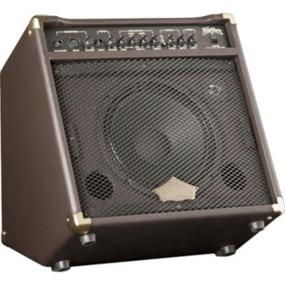 Washburn WA30 Superior 30 Watt Acoustic Guitar Amplifier, Reverb/Chorus Effects