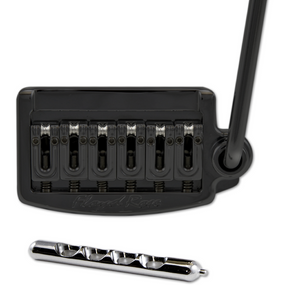 Floyd Rose RT200N Rail Tail Tremolo System, Narrow, Black