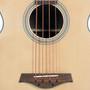J. Reynolds JR1000 4-String Acoustic Electric Bass Guitar (JR1000)