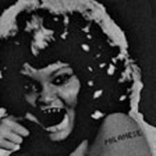 "Milanese - Adapt - 12"" Vinyl"